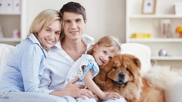 Wills & Trusts dog-young-family Direct Wills Finchampstead